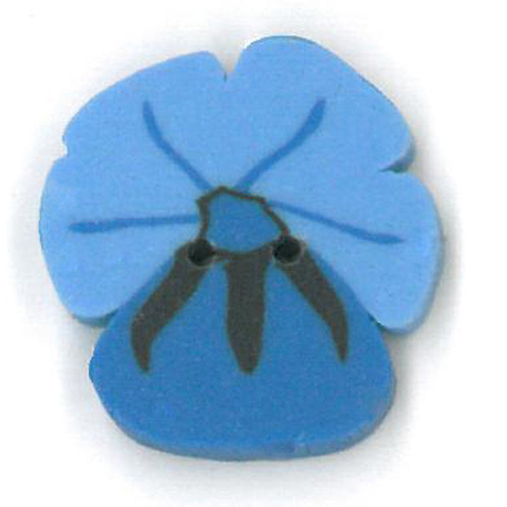 small blue pansy
