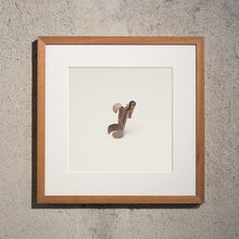 Load image into Gallery viewer, Disappearing Objects — Louis De Belle (Finger Flasher Framed Edition)