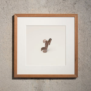 Disappearing Objects — Louis De Belle (Finger Flasher Framed Edition)