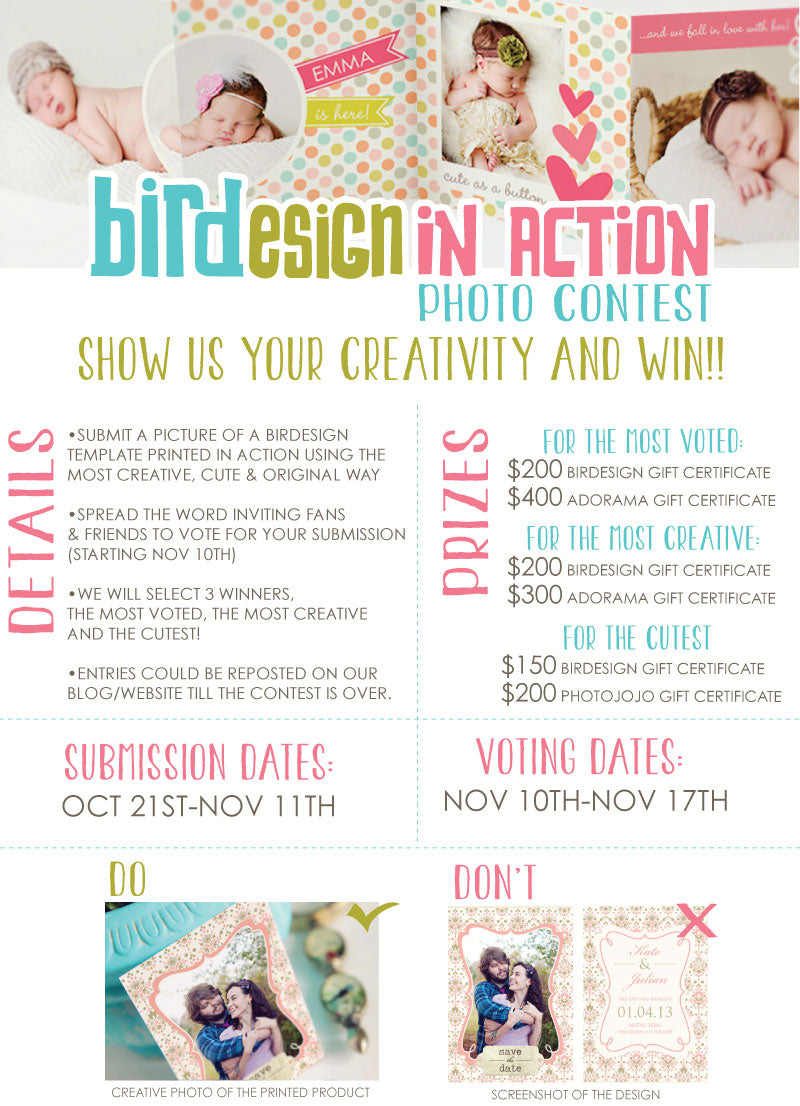 Birdesign Photography templates photo contest
