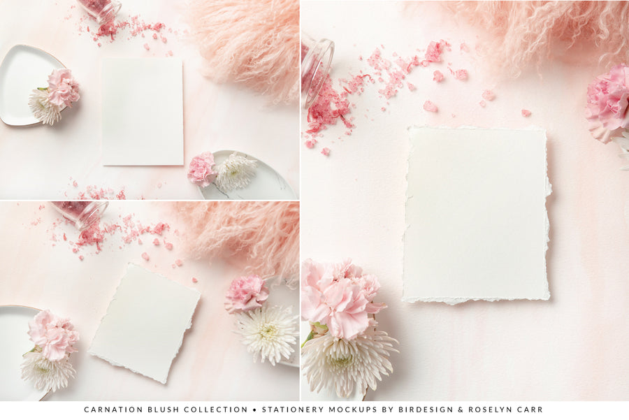 Carnation Blush Stationery Collection | 15 Stock Images