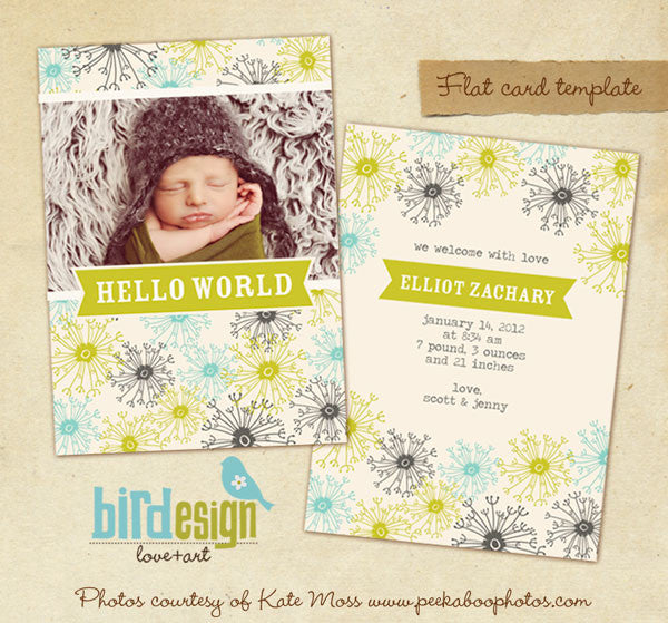Birth Announcement | Dandelion