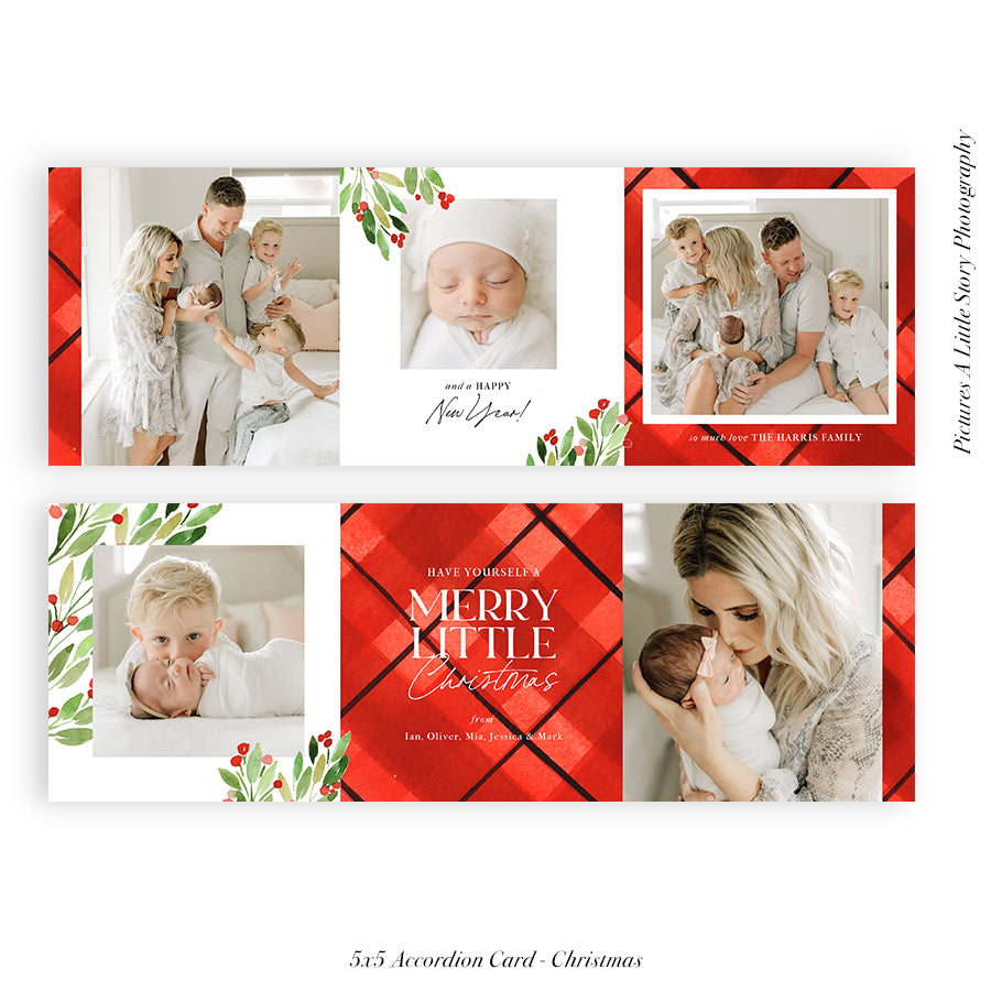Christmas accordion card 5x5 (Trifolded) | Merry Forever