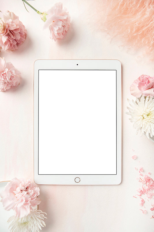 Carnation Blush Stock Image - Ipad 1