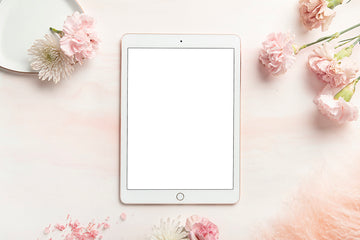 Carnation Blush Stock Image - Ipad 2
