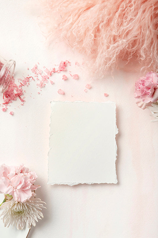 Carnation Blush Stock Image - Paper 1