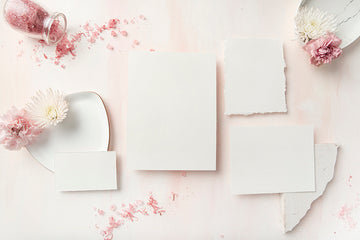 Carnation Blush Stock Image - Stationery 1