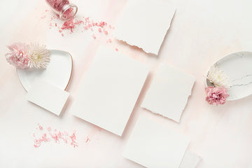 Carnation Blush Stock Image - Stationery 2