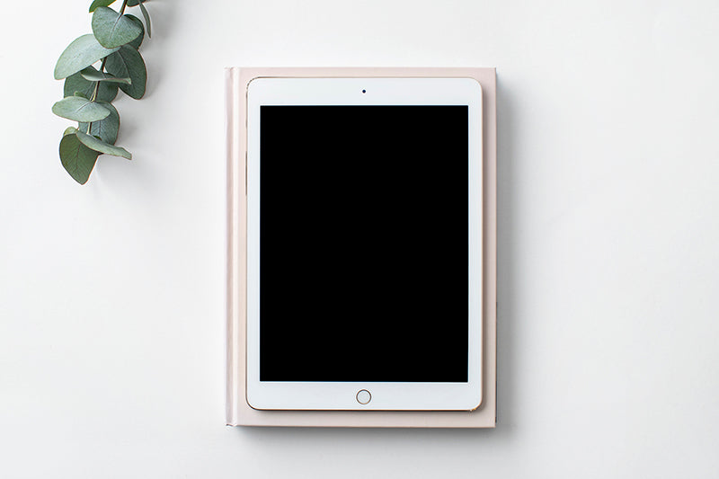 CleanGreen Stock Image | Ipad 1