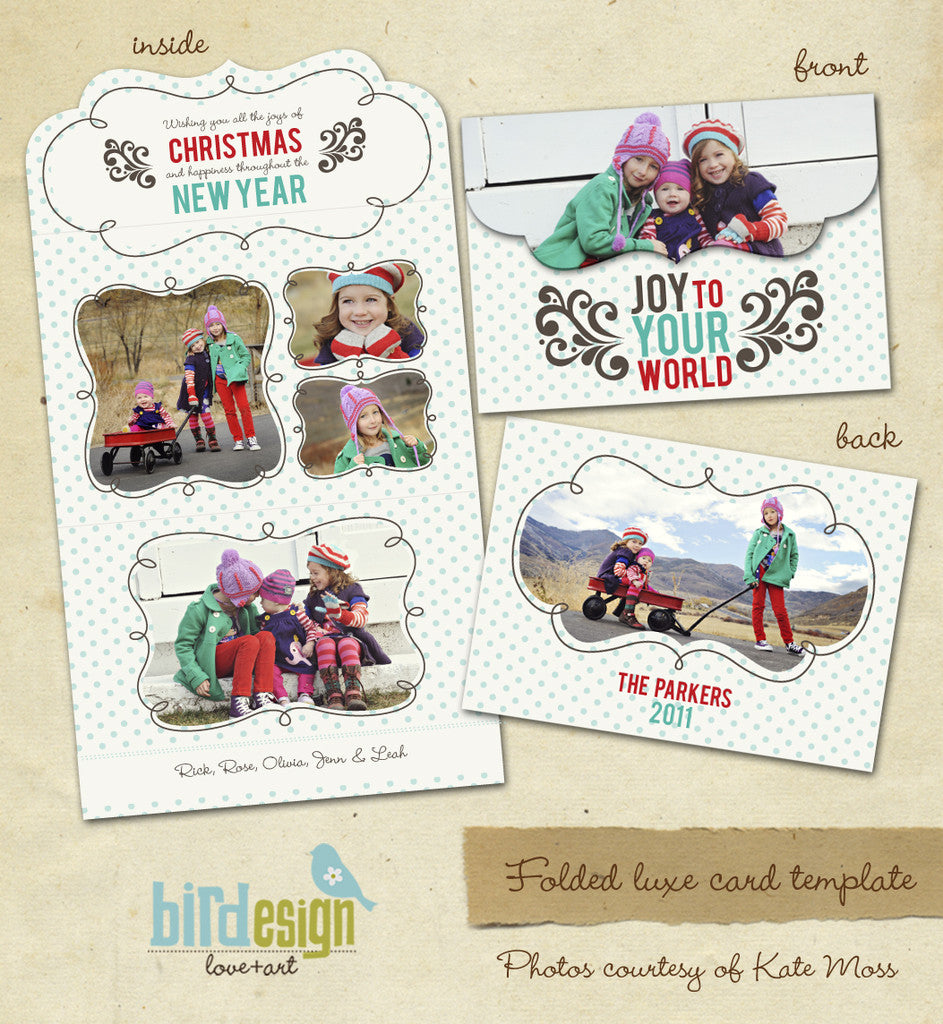 Holiday Ornate Photocard  | Family Joy