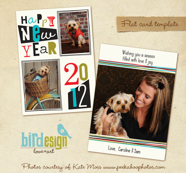 Holiday Photocard | Surprises & Love