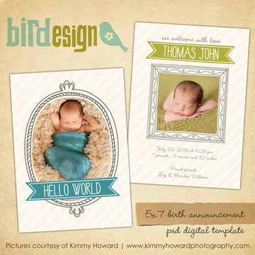 Birth Announcement | Whimsy boy