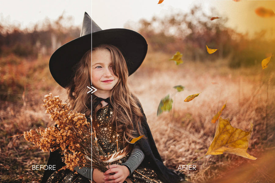 Fall & Leaves Photo Overlays