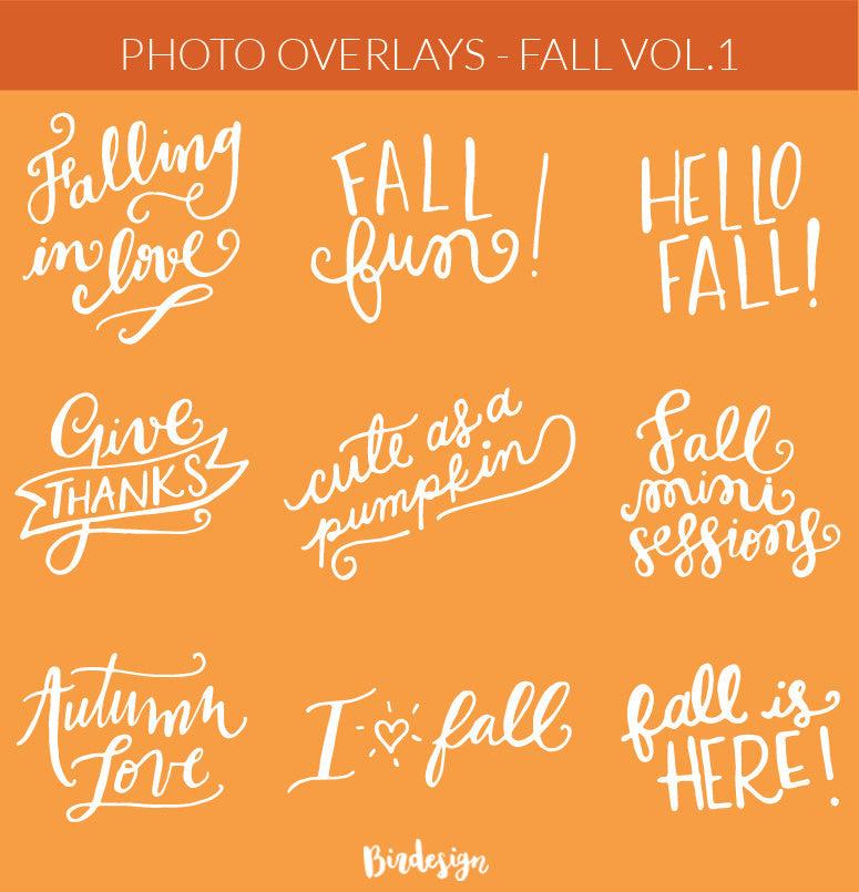 Photo Overlays | Fall Vol. 1