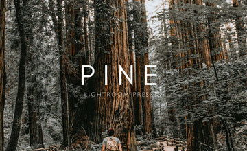 Pine Warm Lightroom Presets for Desktop & Mobile