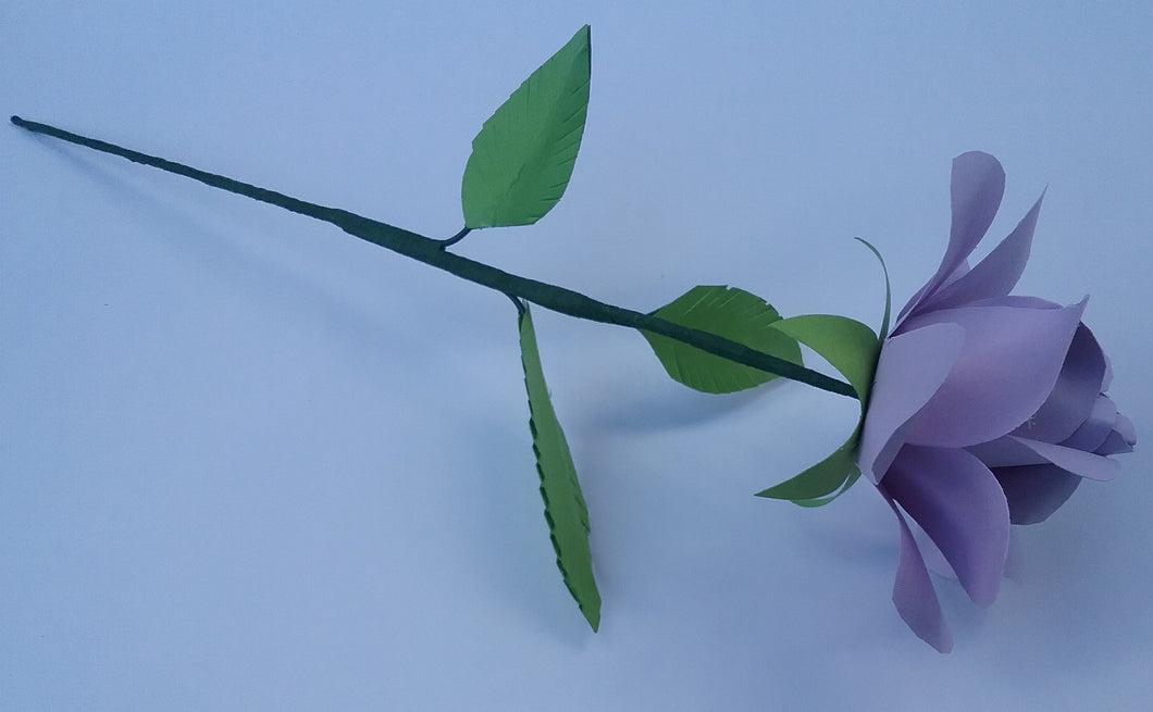The Forever Rose in Lavender