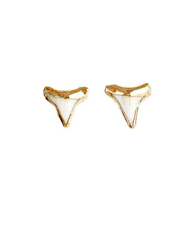 Gold Plated Shark Tooth Studs