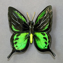 Load image into Gallery viewer, Butterfly Bronze Statue Figurine Insect Art / Limited Edition / Signed & Numbered - sculptin.com