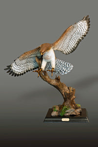 "Home Decor - Gorgeous ""RED-TAILED HAWK"" Sculpture"