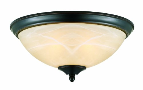 2 Light Ceiling Light, Oil Rubbed Bronze - EK CHIC HOME