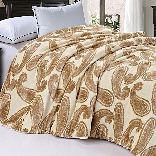 Soft and Thick Faux Fur Sherpa Backing Bed Blanket, Amphora Big Paisley, 84