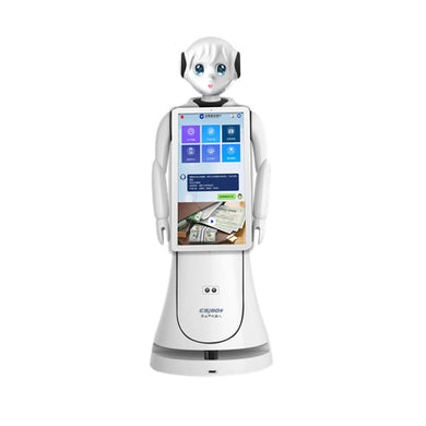 ALICE - Autonomous Humanoid Intelligent Robot for Reception
