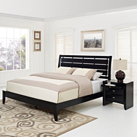 2-Piece Queen Contemporary Bedroom Set in Black - EK CHIC HOME