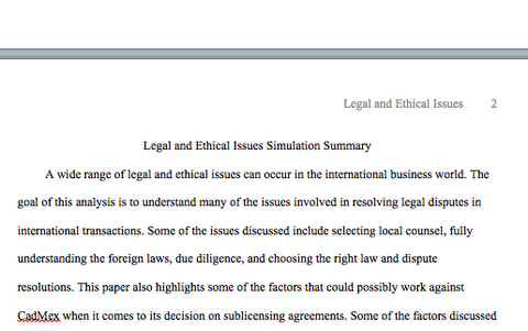addressing international and ethical issues essay