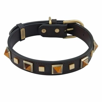 Rock & Roll Tiger Eye Leather Collar