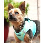 American River Choke Free Dog Harness Ombre Collection