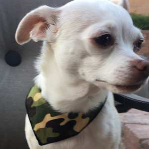 Camouflage Dog Bandana with Attached Quick-Release Buckle