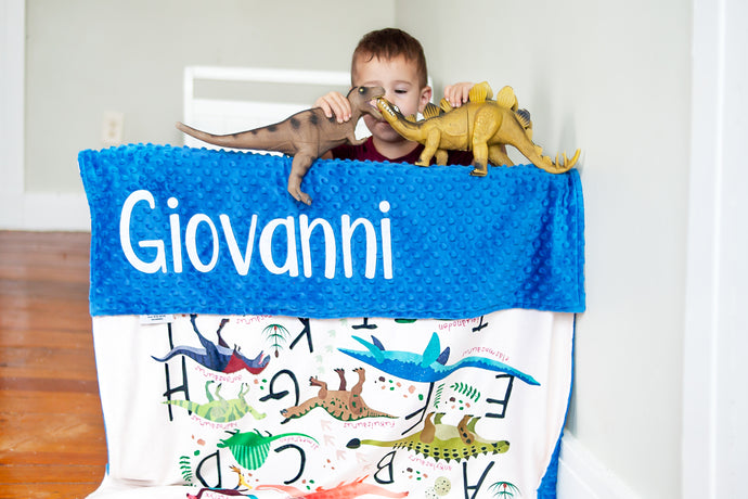 Dinosaur Alphabet Toddler Blanket