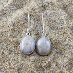 Load image into Gallery viewer, Drop Earrings Fossilized Sand Dollar-Jenstones Jewelry