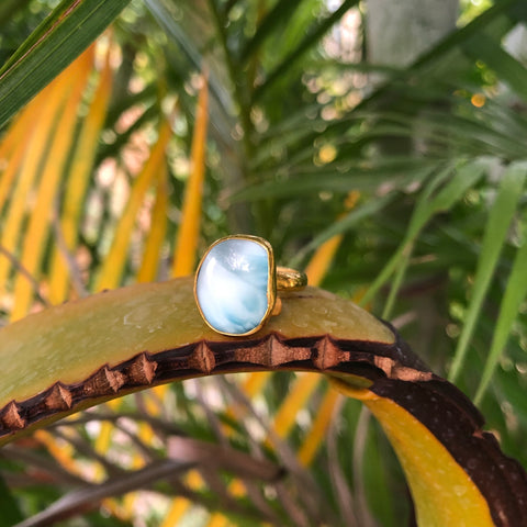 Larimar GP Bronze Ring