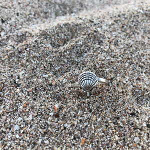 Ring Scallop Shell-Jenstones Jewelry
