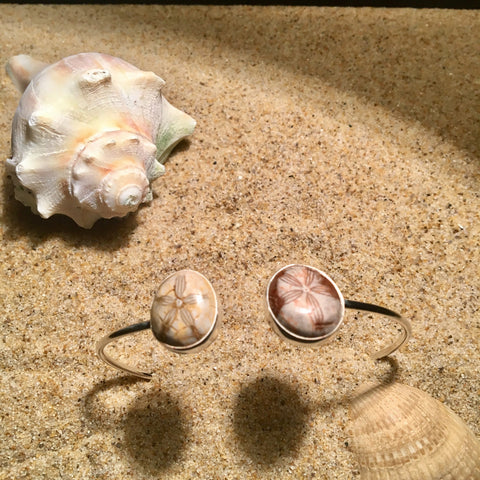 Skinny Wrap Bangle with Double Fossilized Sand Dollars