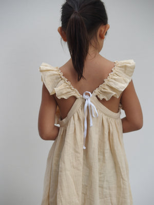Liilu Pinafore Dress, back