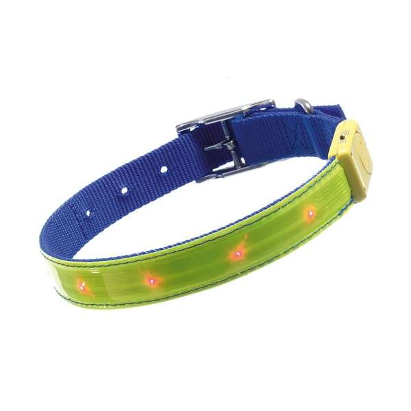Karlie Safety Light - blinkendes Sicherheitshalsband M