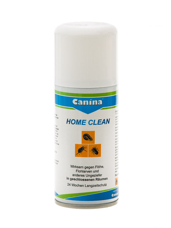 Home Clean 150ml