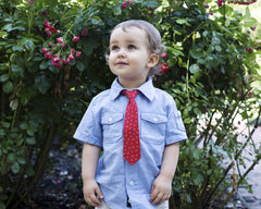Red with Stars Neck Tie