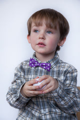 Purple with Dots Bowtie