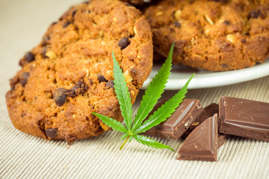 Chewing Your Way to Better Health: What to Know About CBD Edibles