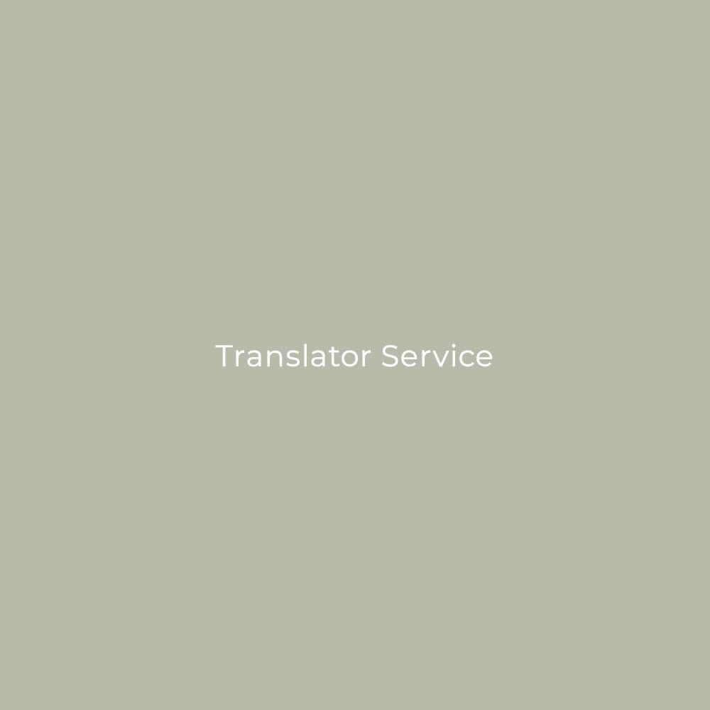 1-Day Translator Service