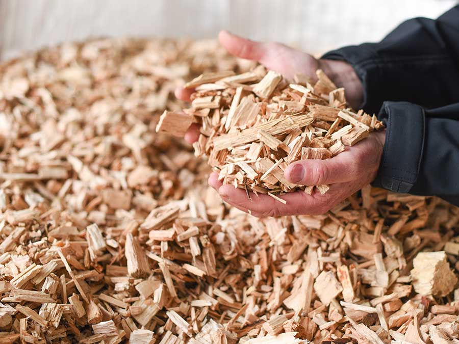 Wood chip for biomass boilers