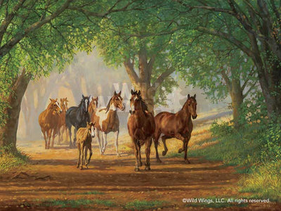 Country Lane—Horses.