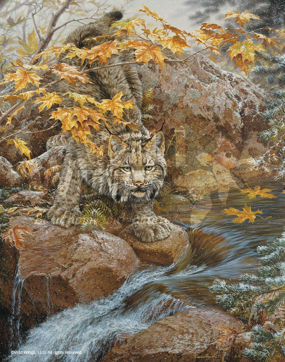 First Fall-Lynx Art Collection