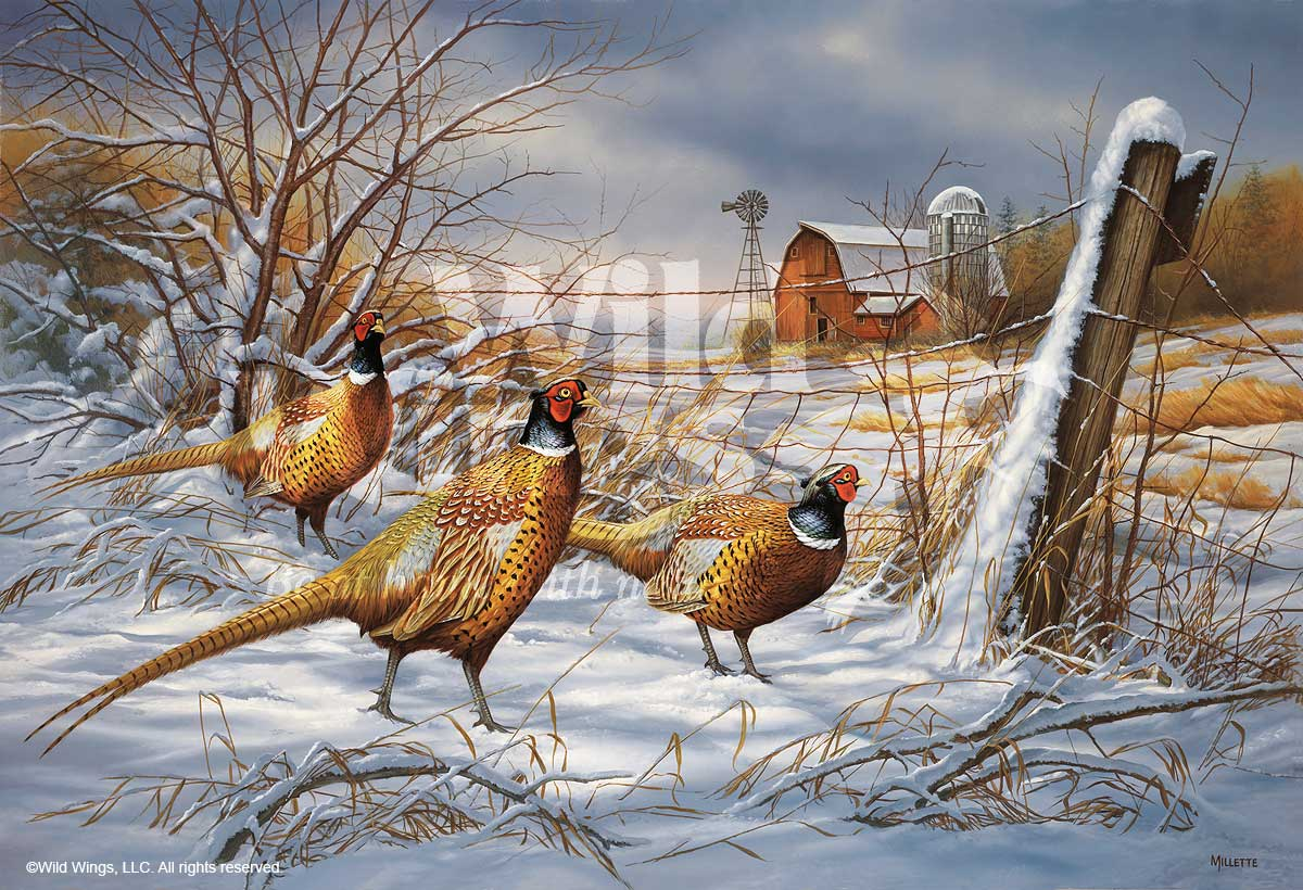 <i>After the Storm&mdash;Pheasant</i>