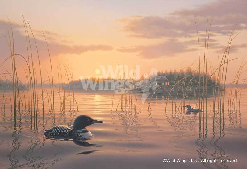 <I>Twilight Patrol&mdash;loons</i> Artist Proof Print