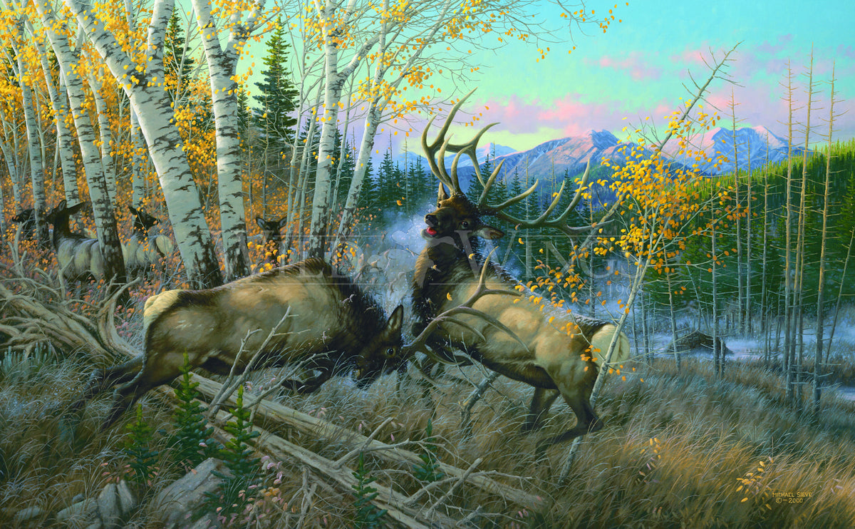 <i>Battling Elk</i>