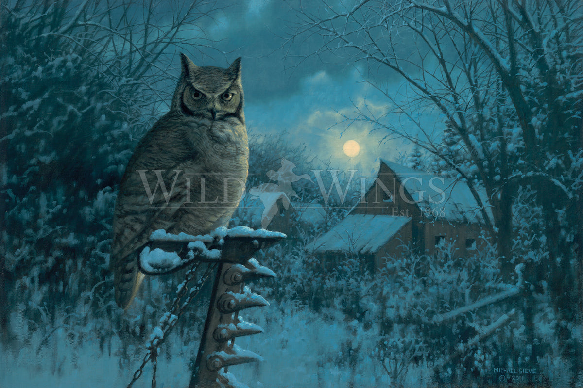 <i>Tiger of the Night&mdash;Owl</i>